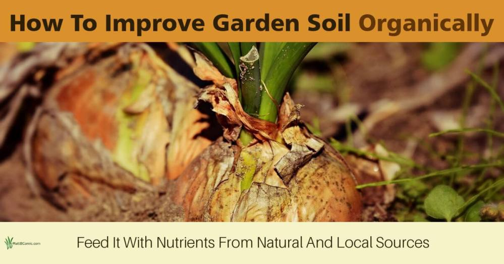 How To Improve Garden Soil Organically Post Graphic