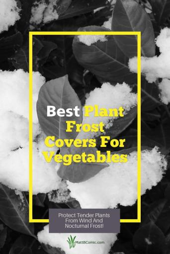 Best Plant Frost Covers For Vegetables Post Graphic