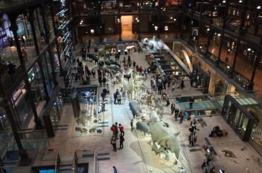 Natural history museum in Paris.
