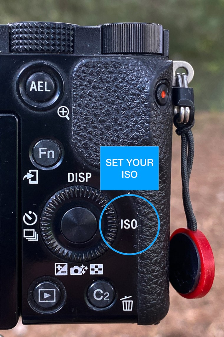 Highlighting the ISO on the back of a camera.