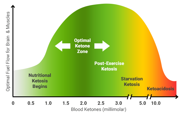 Graph of ketosis with nutritional ketosis starting at .5 mM and ketoacidosis starting at 10 mM