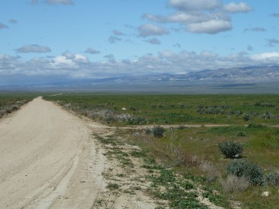 Soda Lake Road