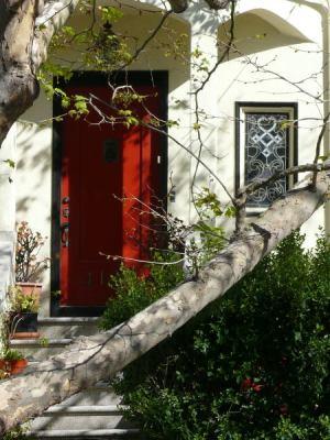 branchred door
