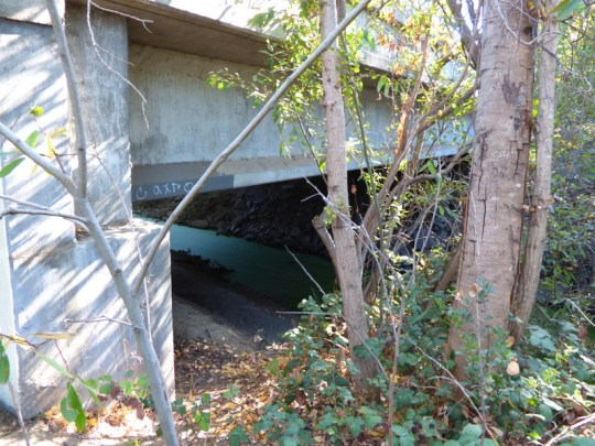 Oak Drive Bridge