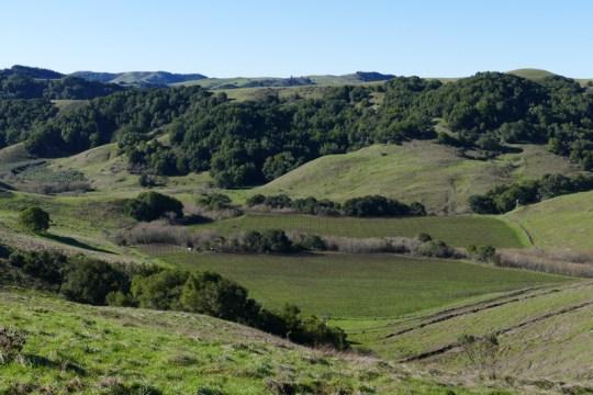west of Petaluma