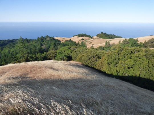 The Pacific from Mt. Tam
