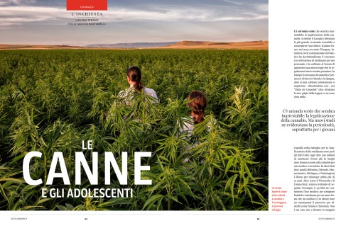 """June 2019 - One of my photographs, part of the series """"Green Gold"""", has been published in Sette, weekly magazine of Il Corriere della Sera, with an article written by Elena Tebano."""