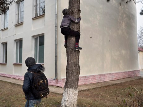 A student climbing a tree outside the school. Doroţcaia, Moldova 2014. © Matteo Bastianelli