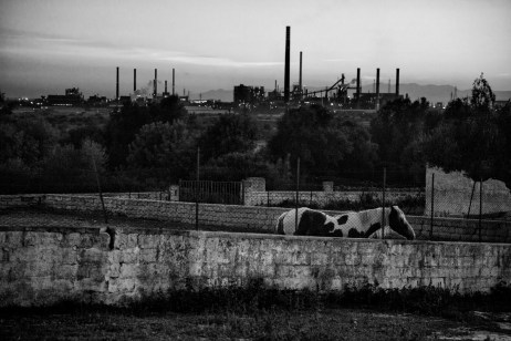 A view at sunset of the historic Carmine farmhouse, which has belonged to the Fornaro family since 1859. Over the years the land owned by that family has been enveloped by the largest steelwork industry in Europe. Taranto, Italy 2013. © Matteo Bastianelli