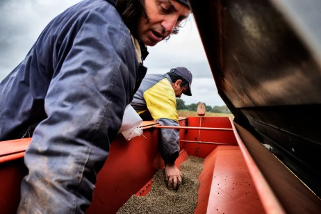 Vincenzo Fornaro, owner of the Carmine farmhouse, helps a farm worker pour hemp seeds into a precision- sowing machinery. Vincenzo decided to remediate a two-hectare field through hemp cultivation. Taranto, Italy 2016. © Matteo Bastianelli
