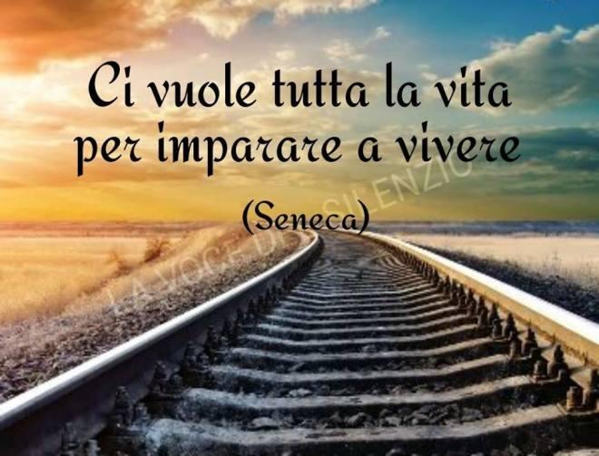 Seneca ha impiegato tutta la vita per imparare