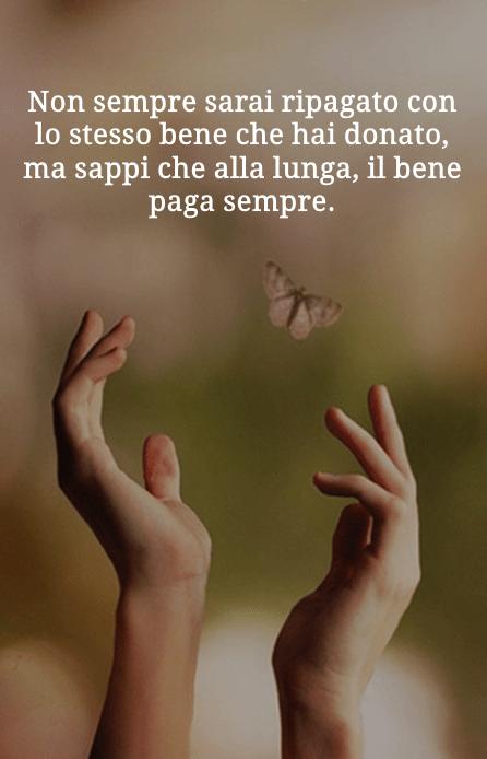 Frase di Antonio Gravina