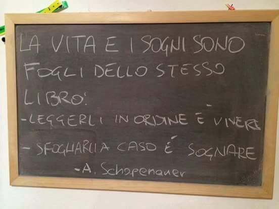 VitaSogniStessoLibroLeggereVivereSfogliareSognareShopenhauer