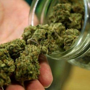 Barattolo di vetro contenente cannabis - Fonte: La Repubblica