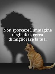 Immagine di un gatto con l'ombra di un leone