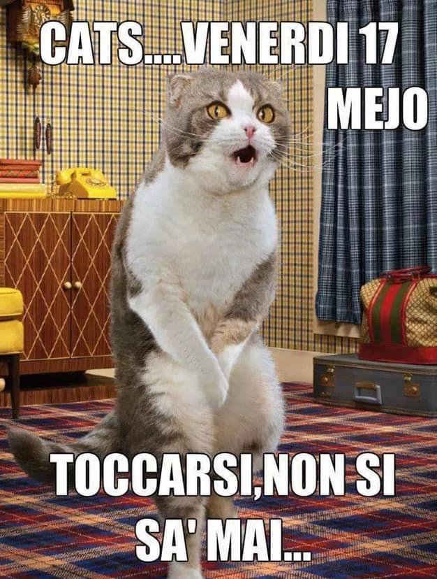 Cats: venerdì 17. Mejo toccarsi, non si sa mai