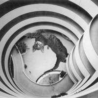 cats & modernism