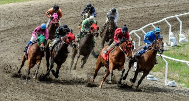 Horses and their jockeys round the curve as part of the seven furlough fifth race during the Pari-Mutual Horse Races at the Brown County Fairgrounds on Sunday in Aberdeen.