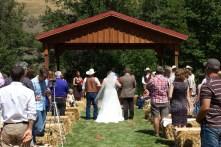 wedding 204