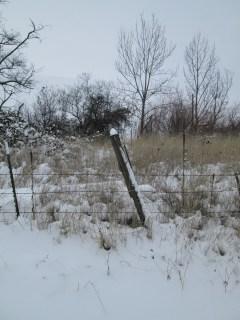 christmas, snow 20132014 067
