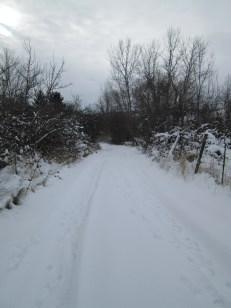 christmas, snow 20132014 068