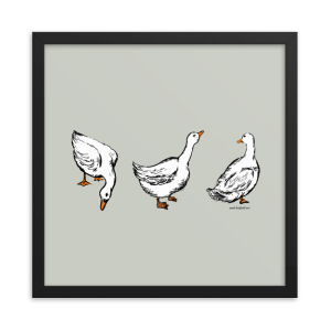 Ducks-Illustration-by-Matt-Hatfield