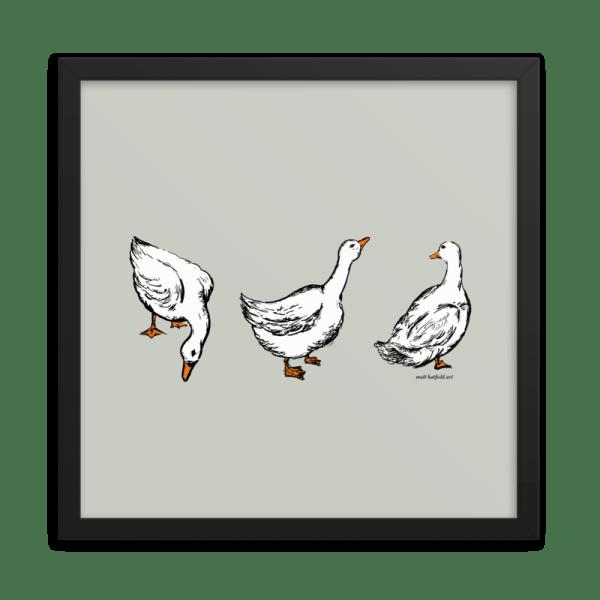 Ducks-Illustration-by-Matt-Hatfield