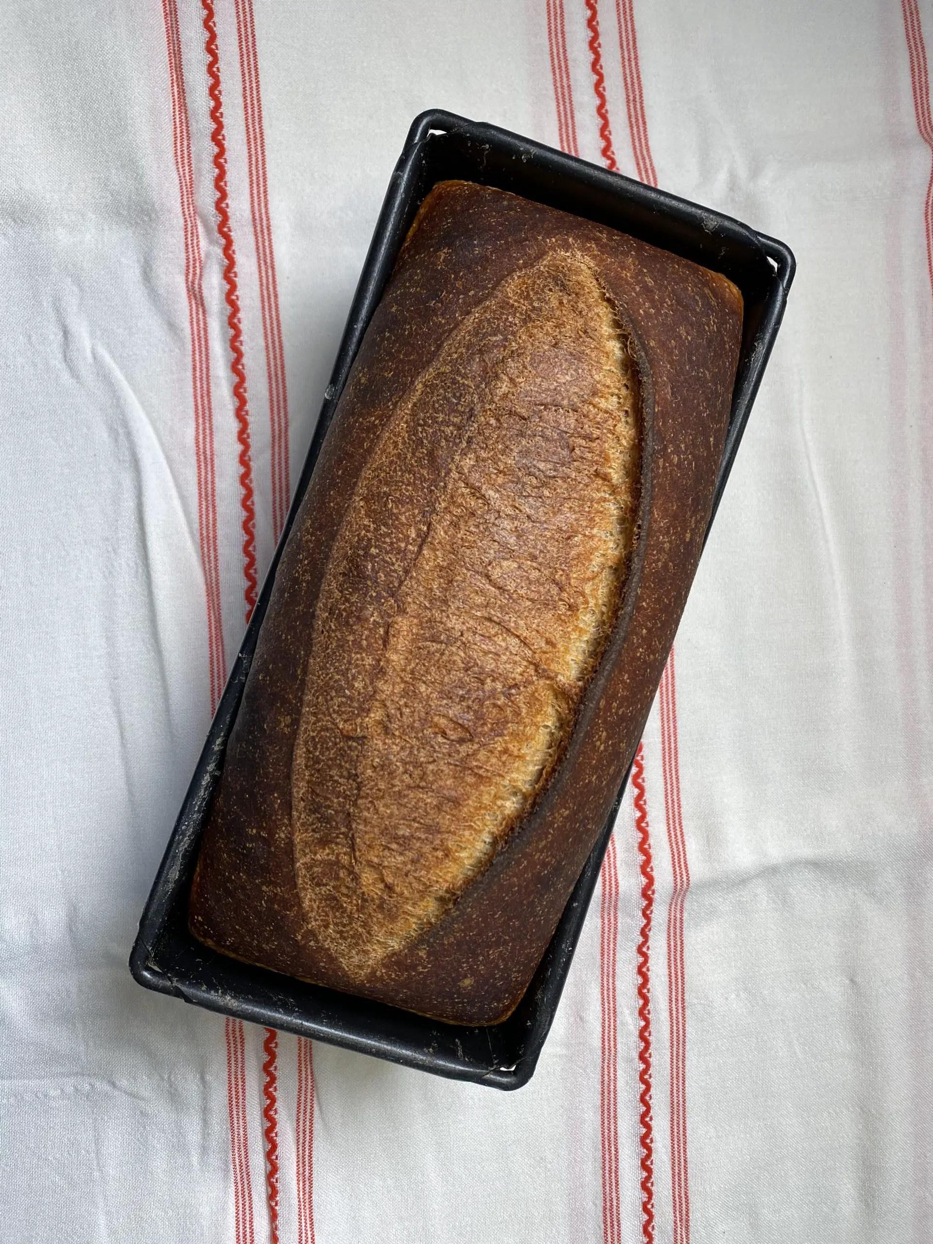 Sourdough tin loaf