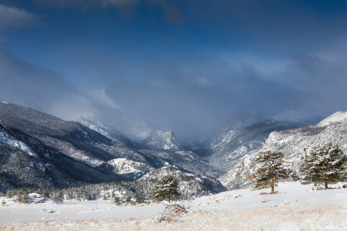 fresh snowfall layers everything in the Colorado rockies