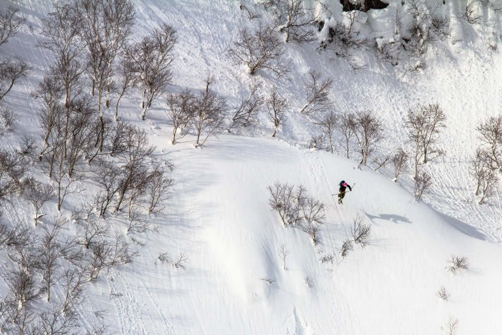 sneding it into fresh snow in the back country of niseko japan