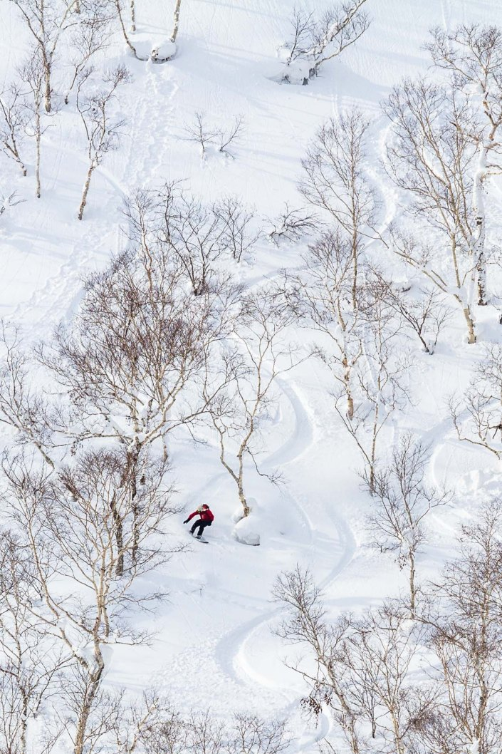 a snowboarder makes fresh tracks in powder snow in niseko japan