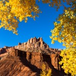 fall colours frame the natural rock features of capitol reef National park