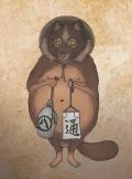 tanuki copy