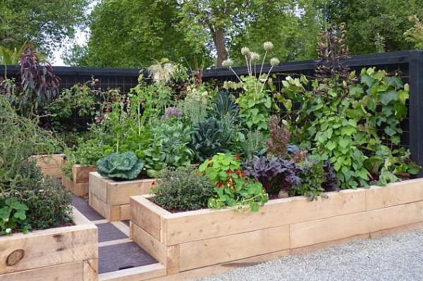 Building Vegetable Garden Nz