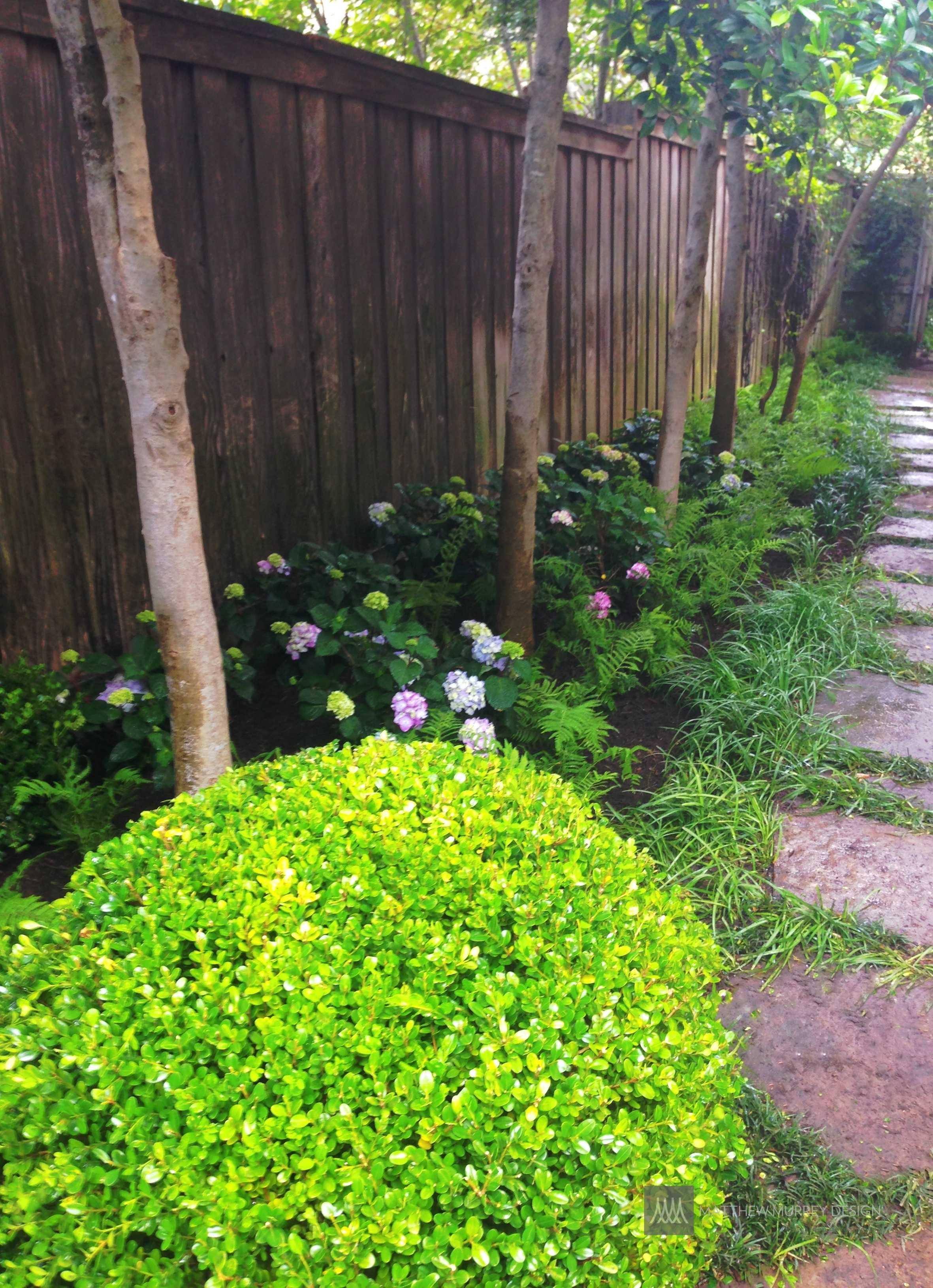 title | Shade Garden Ideas