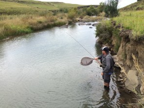 My oldest bro, Andrew, landing a rainbow trout. He's kind of good at it.
