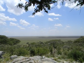 The Serengeti really is quite big...