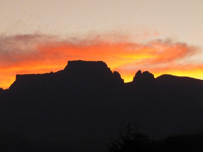 Mafadi Sunset