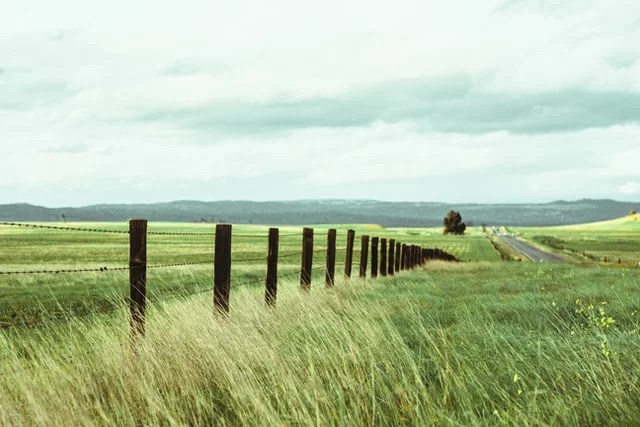 Fence in a field by Omar Lopez - omarlopez1