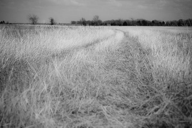 Texas Grass Road