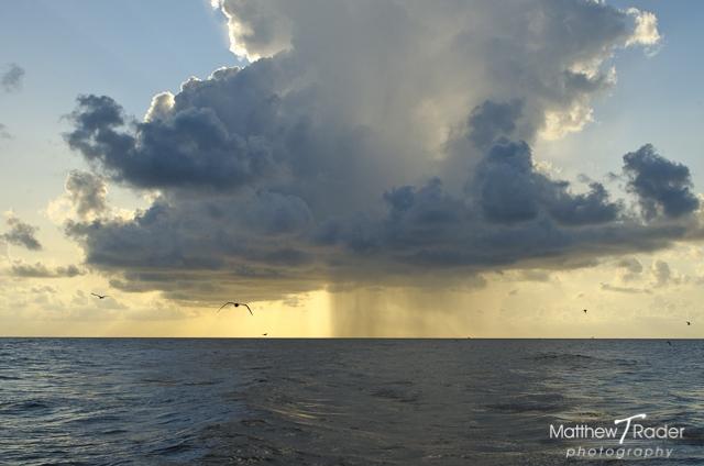 Galveston Island Seascape with a Rain Cloud (3)