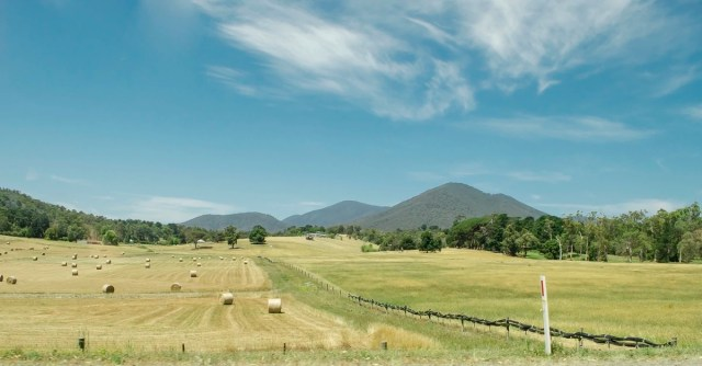 A pasture in Healesville, Australia