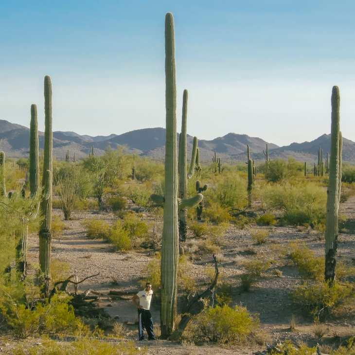 Me standing next to a cactus at Saguaro National Park