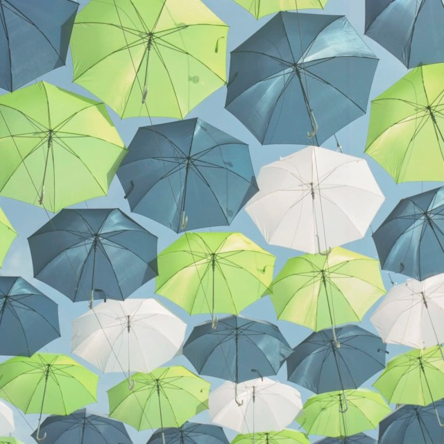Umbrellas at the Texas Fair