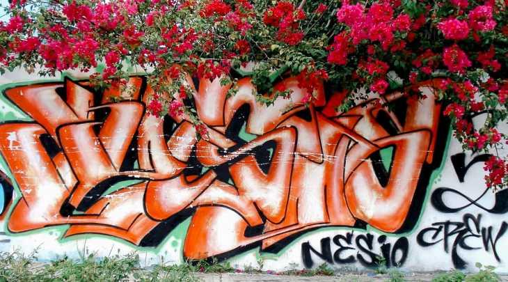 Murals, graffiti, and street art in Cancun, Mexico