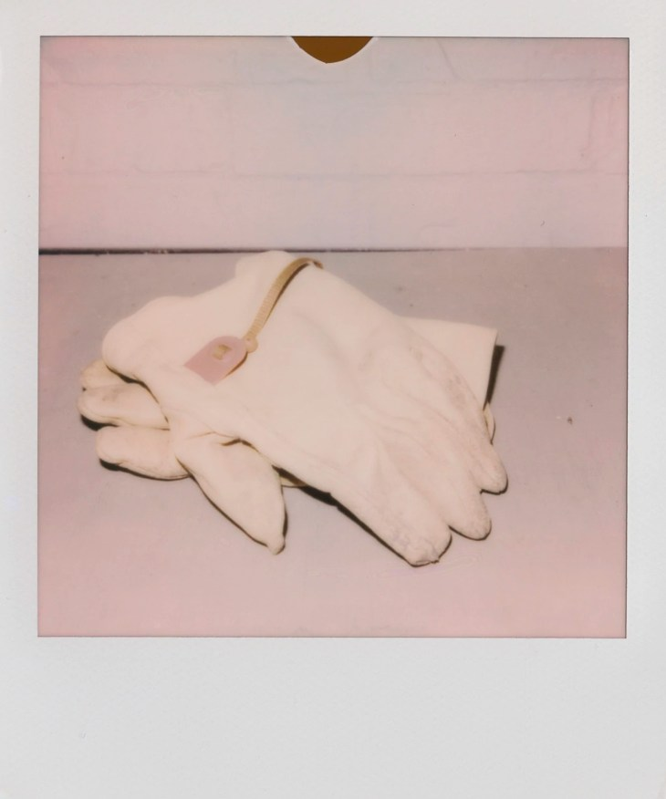The gloves I wore when doing landscape projects
