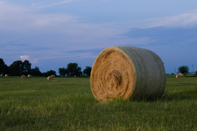 Hay bale in a pasture at dusk