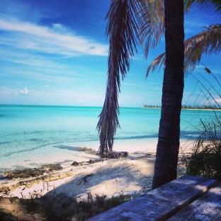 Palms at Serenity Bay