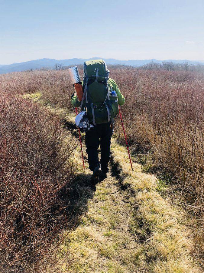 Matt Hodel hiking Gregory's Bald