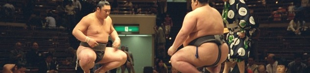 sumo-competition